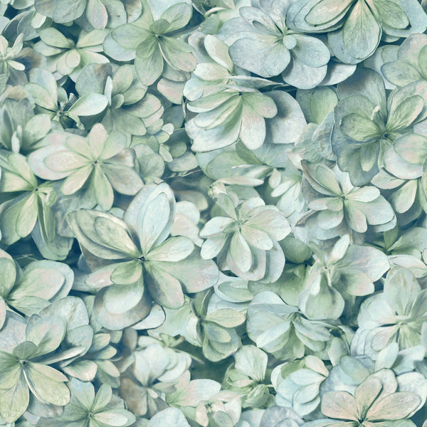 Hydrangea Peel & Stick Wallpaper