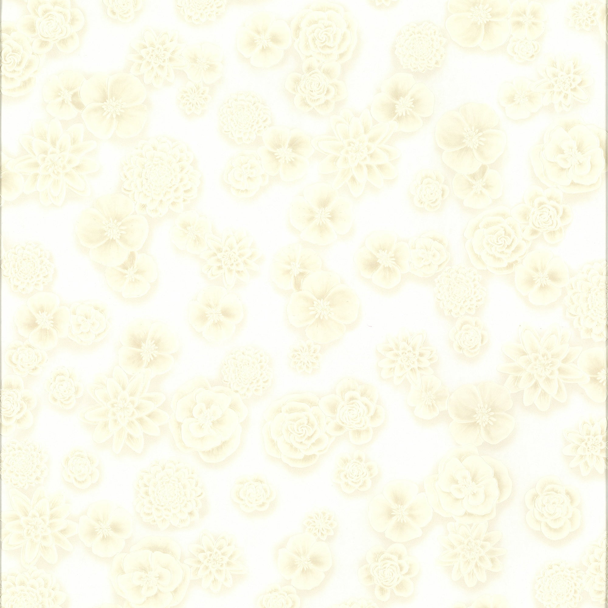 Ashford House Posy Wallpaper - Silver