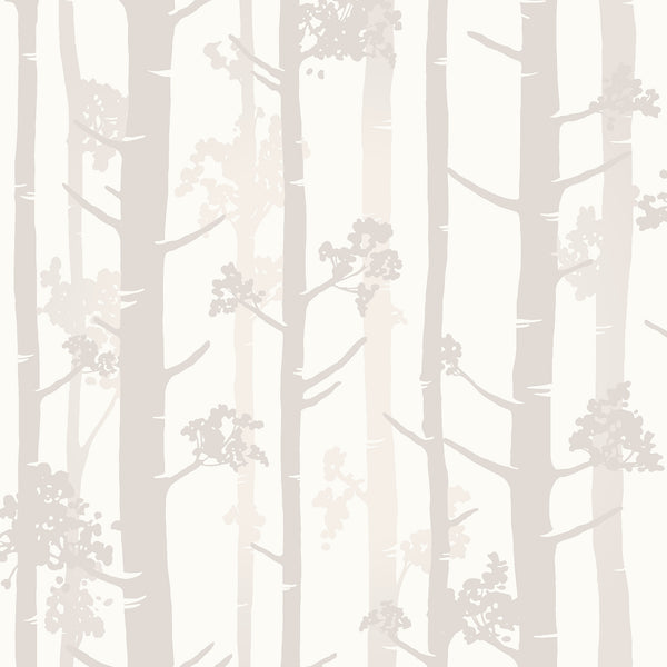 Sydow Beige Birch Tree Wallpaper