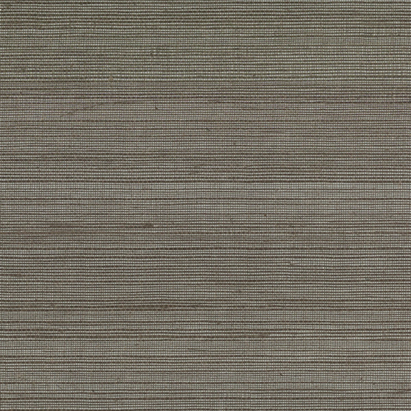 Metallics Ramie Wallpaper  in Brown