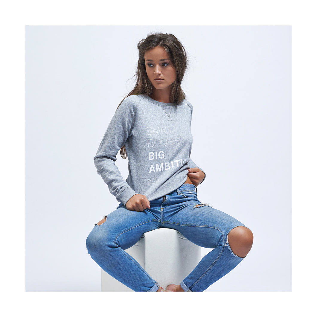 SWEATER - SMALL BOOBS - long sleeves - Light Grey 30% DISCOUNT AT CHECKOUT USE CODE