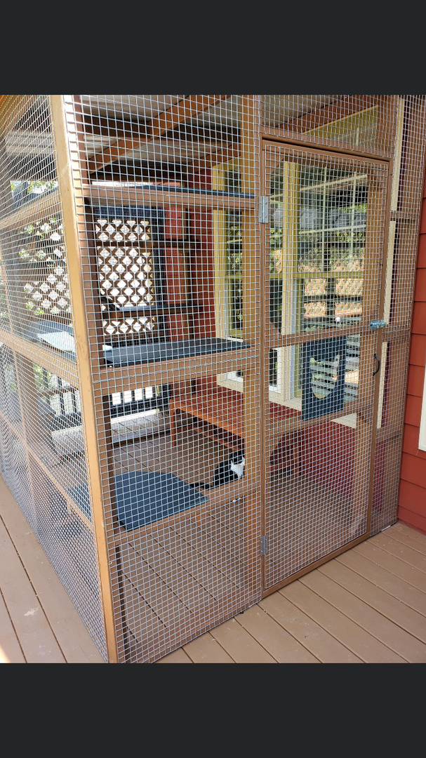 Catio & Kennel