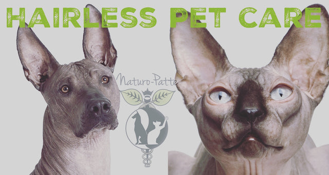 Hairless Pet Care - Grooming Products