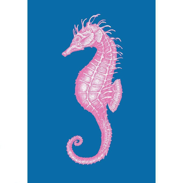 Seahorse Art Print In Bright Blue And Pink In Three Sizes - A2, A3 And A4 -Accessories- Cream Cornwall