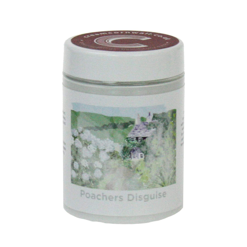 Poachers Disguise Paint -Accessories- Cream Cornwall