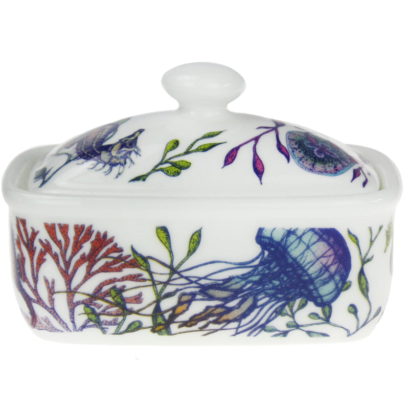 Bone China Reef Butter Dish -Kitchen & Dining- Cream Cornwall