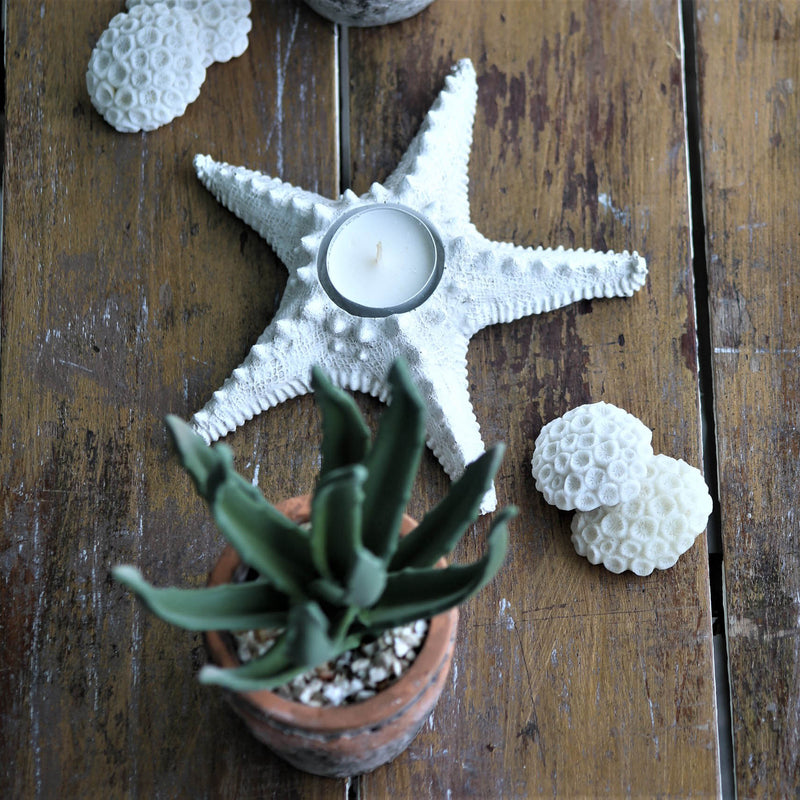 Resin Starfish Tea Light Holder -Accessories- Cream Cornwall