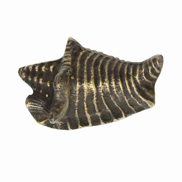 Brass Conch Shell Decorative Handle - Small -Accessories- Cream Cornwall