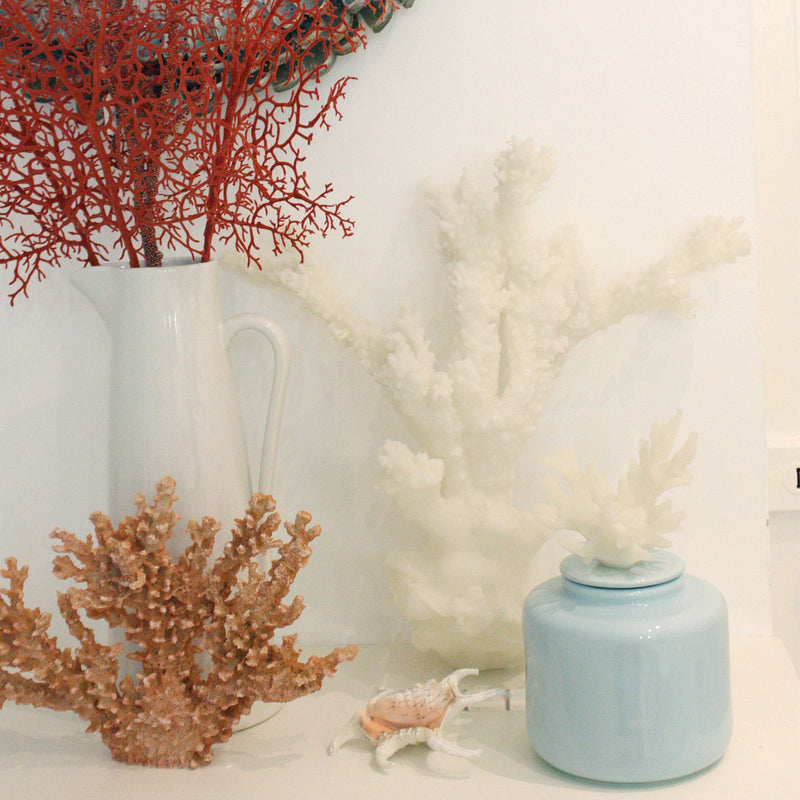 Tall White Resin Reef Branch -Accessories- Cream Cornwall