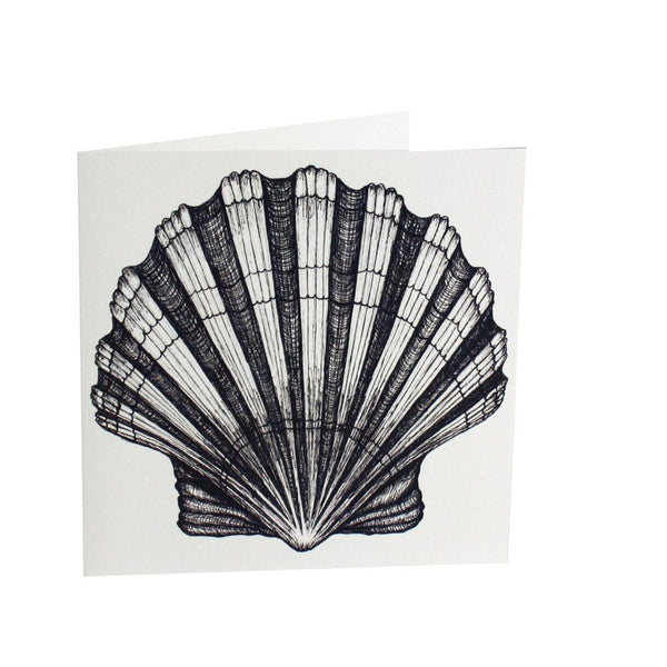 Scallop Shell Card - cream cornwall