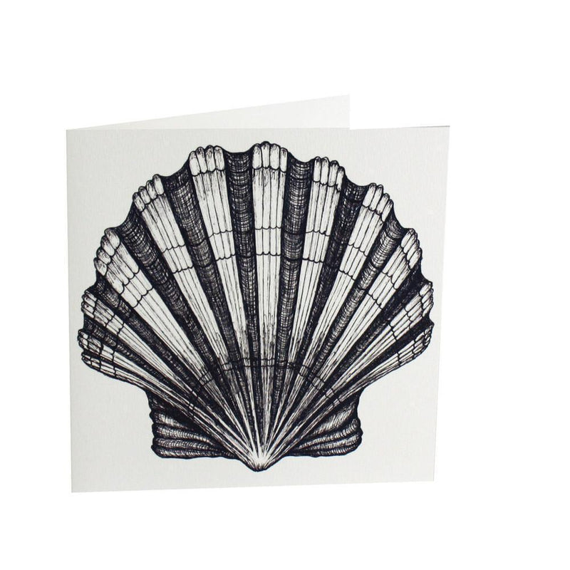 Scallop Shell Card -Accessories- Cream Cornwall