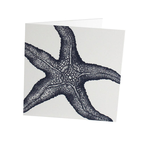 Star Fish Card - cream cornwall
