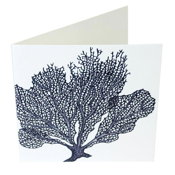 Sea Coral Card - cream cornwall