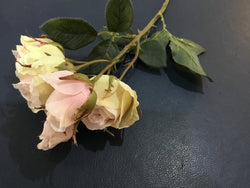 Vintage Soft Pink Rose Spray -Accessories- Cream Cornwall