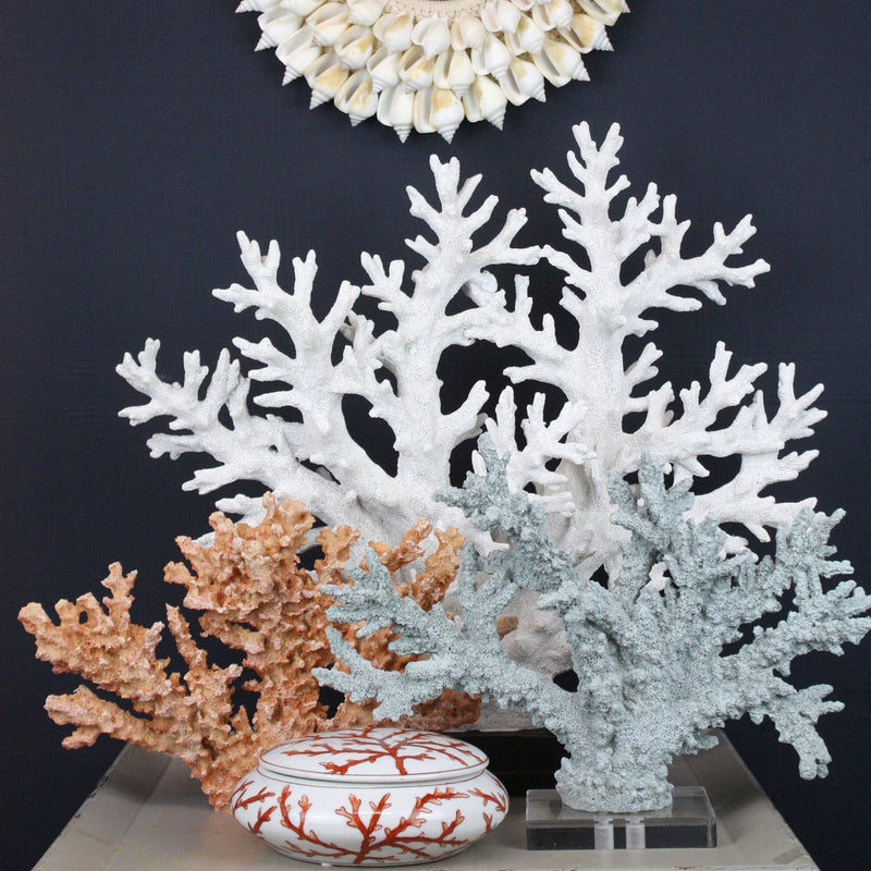 Resin Reef Branch Ornament -Accessories- Cream Cornwall