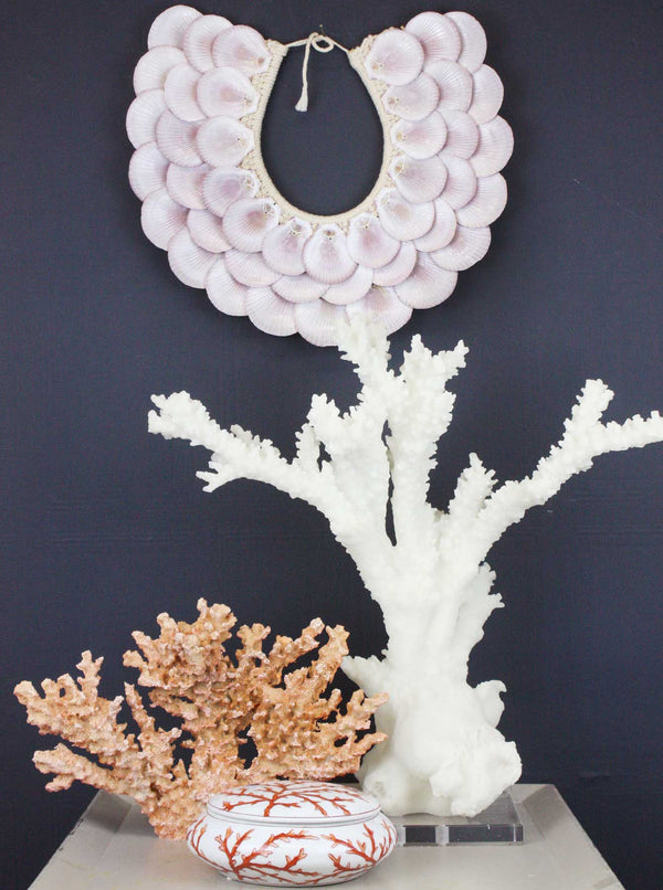 Pink Scallop Shell Wall Art -Accessories- Cream Cornwall