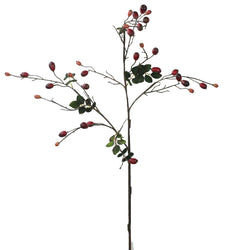 Rosehip Branch -Accessories- Cream Cornwall