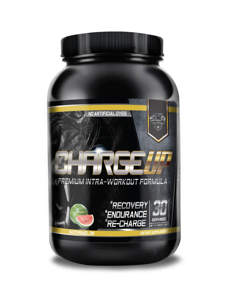 CHARGE UP INTRA WORKOUT ENDURANCE FUEL