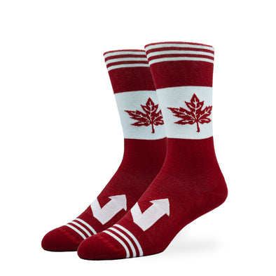 WOMEN'S SILVER CREW SOCKS | THE NORTH