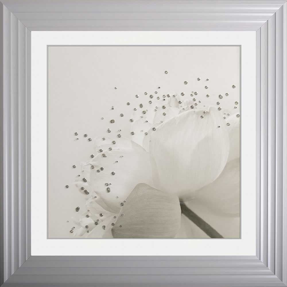 Lotus Flower 1 Framed Liquid Artwork