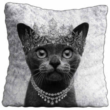 SIAMESE CAT Crushed Velvet Cushion