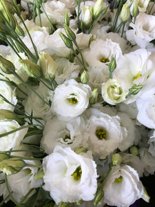 Grower's Design Pull-White Wedding