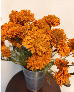 Dried Flowers-Marigold Orange