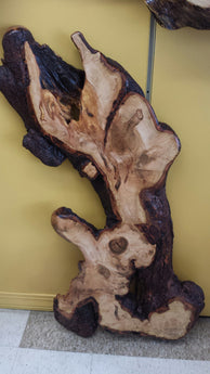 Maple Burl Wall Sculpture
