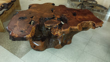 Redwood Burl Coffee Table
