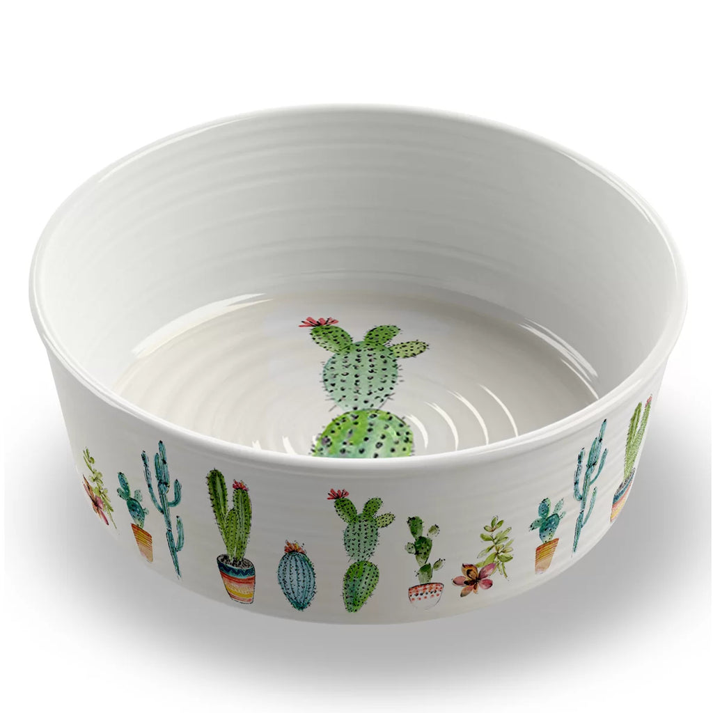 Cactus Pet Bowl-Large