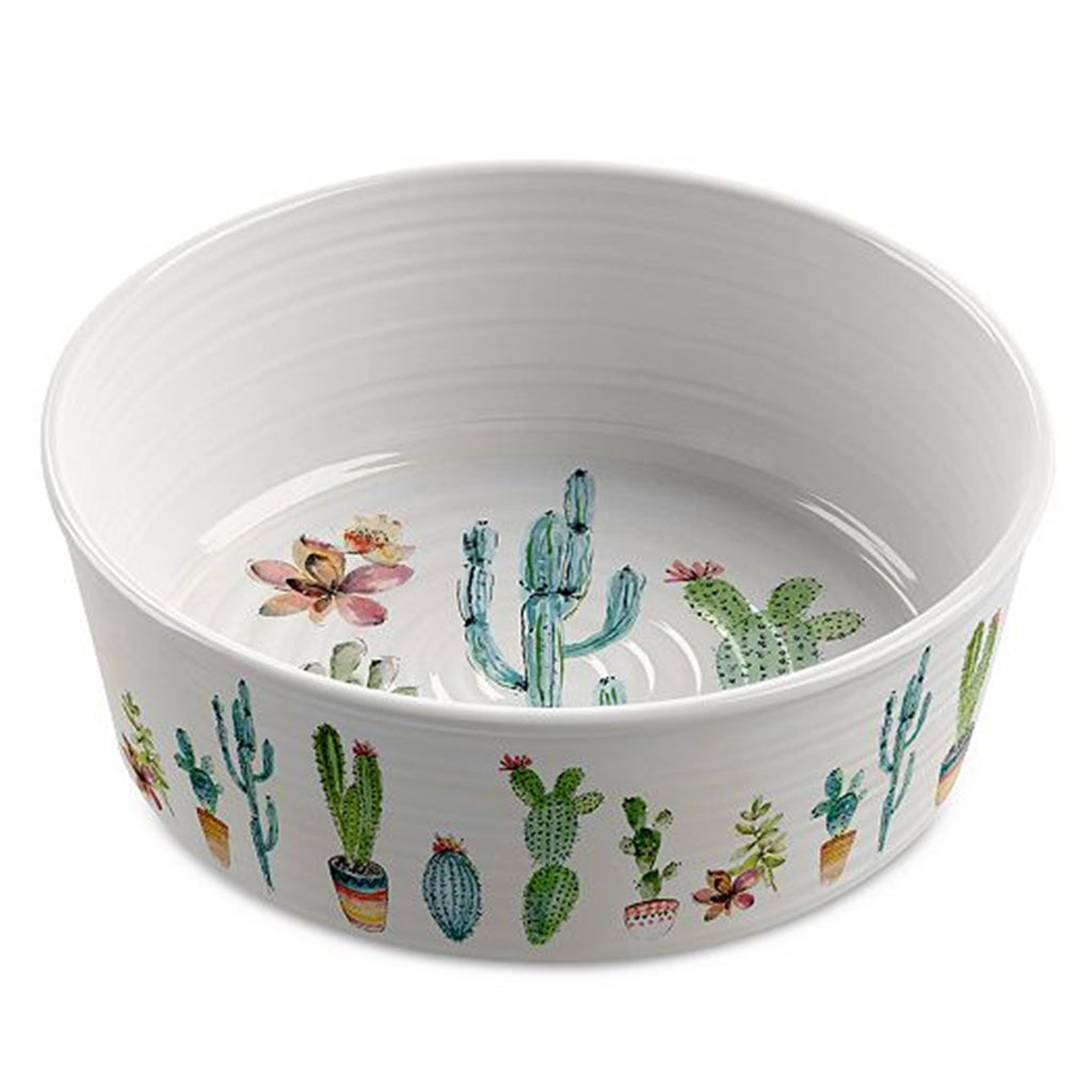 Cactus Pet Bowl-Medium
