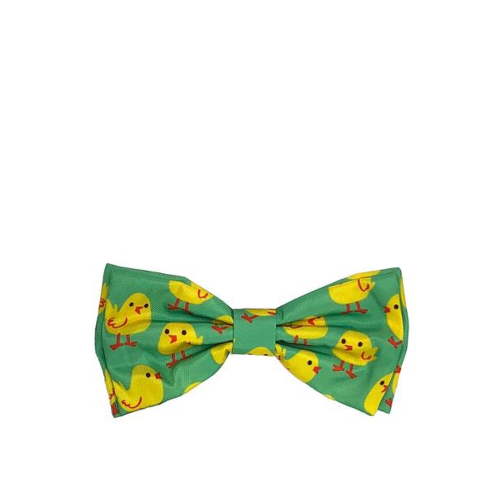 Chicks Bow Tie