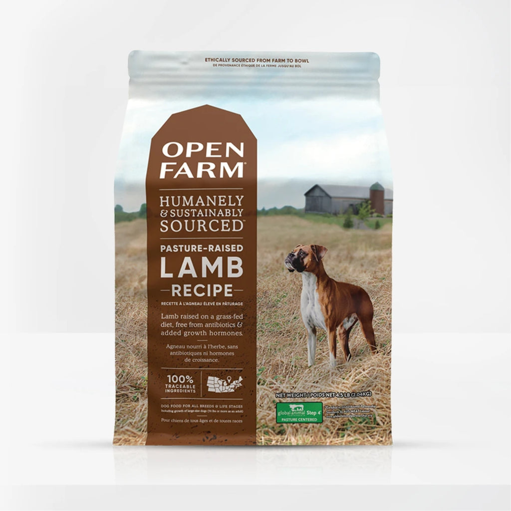 Pasture-Raised Lamb Dry GF Dog Food