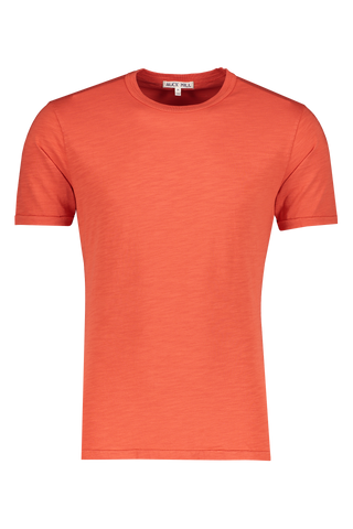 Front view image of Alex Mill Men's Standard Slub Cotton Tee Chili