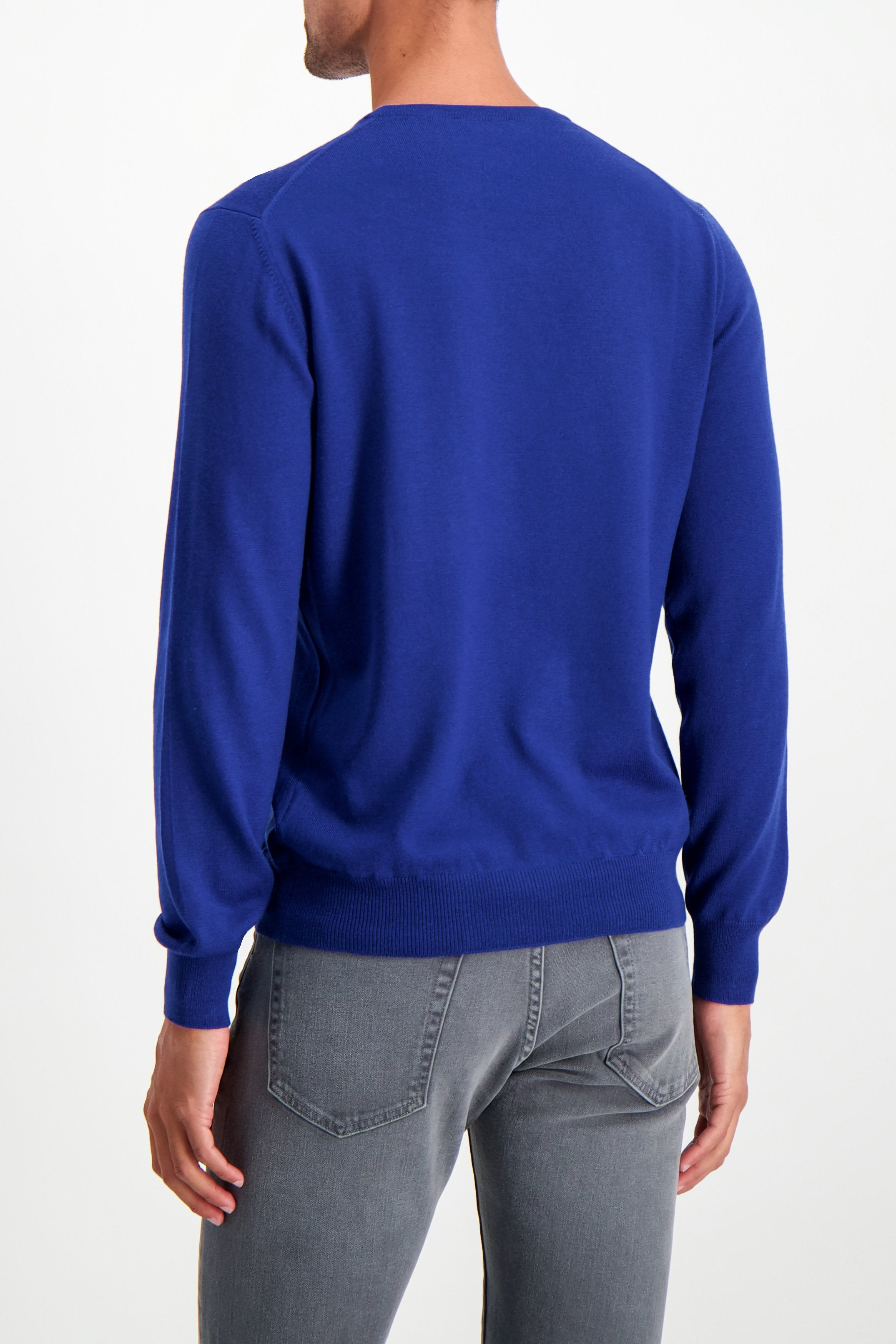 Back Crop Image Of Model Wearing Gran Sasso Men's Merino Crewneck Sweater Blue