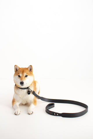 Pelle Tessuta Dog Leash