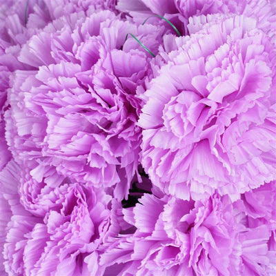 Large Carnation Bush Artificial Silk Flowers - Lavender
