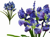 36 Large Iris Flowers-Blue