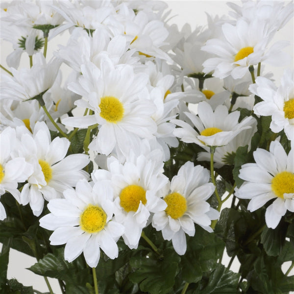 Common Daisy Bush Artificial Silk Flowers - White