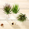 "Set of 3 | Multi Colored Fake Succulents | 8"" Aloe Cactus Decorative Artificial Plants"