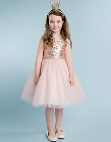 Twinkling Sequined Bodice and Tulle Overlay Skirt Dress - Blush