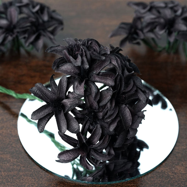 72 EXTRA HIGHLIGHTS Hybrid Craft Lilies - Black