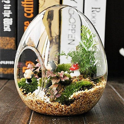 Egg Glass Terrarium 6/pk