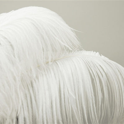 "12 RARE 24""-26"" Ostrich Plume Feathers - White"