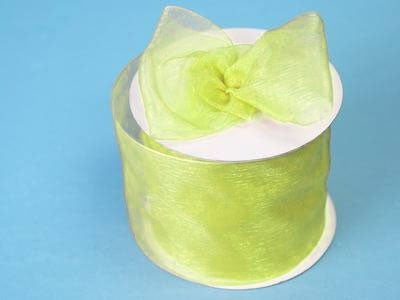 "2 3/4"" Organza Ribbon-Apple Green"