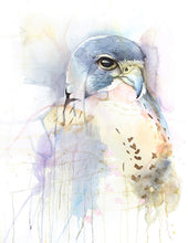 Bird of Prey Giclée Print, Giclée - Ashley Prejoles Art
