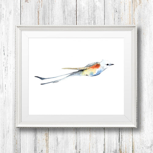 Scissor-tailed Fly Catcher Giclée Print, Giclée - Ashley Prejoles Art