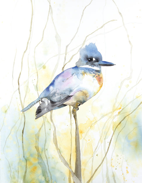 Proud Kingfisher Giclée Print, Giclée - Ashley Prejoles Art