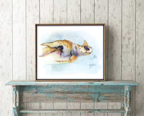 Loggerhead Turtle Giclée Print, Giclée - Ashley Prejoles Art