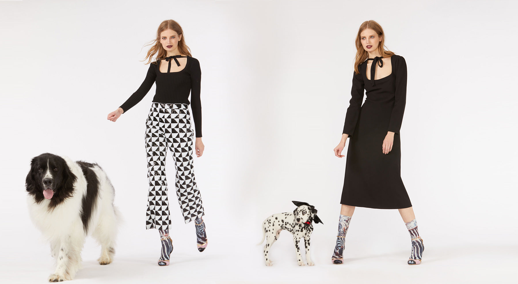 Models wearing the sequin Illusion pants and Dakota tie sweater and the Waverly tie neck dress accompanied by dog.